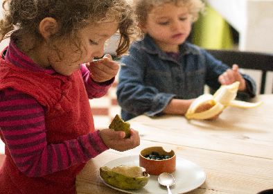 a healthy balanced diet for a toddler