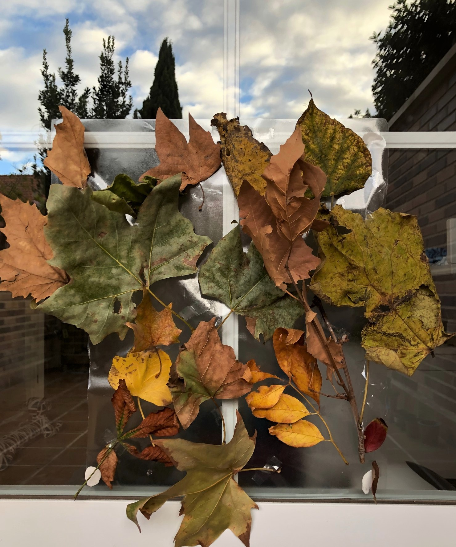Autumn window cling